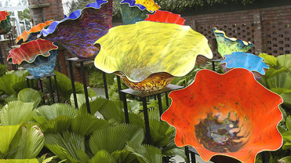 """Chihuly at Phipps"" brought The Macchia Forest, surrounded by ruffled fan palms and Swiss cheese plants, to Phipps' Sunken Garden."